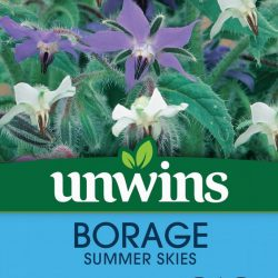 Borage Summer Skies
