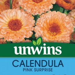 Calendula Pink Surprise