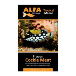 Cockle Meat Frozen 100 G